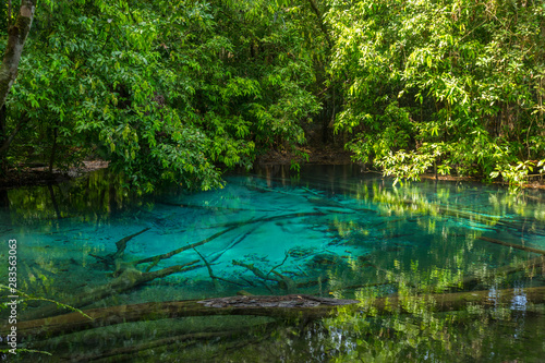Fototapety, obrazy: Emerald Pool (Sra Morakot) in Krabi province, Thailand. Beautiful nature scene of crystal clear blue water in tropical rainforest.