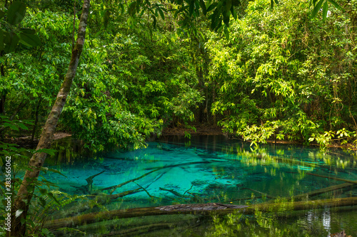 Fototapety, obrazy: Emerald Pool (Sra Morakot) in Krabi province, Thailand. Beautiful nature scene of crystal clear blue water in tropical rainforest.