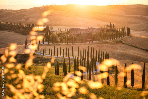 Foto auf Gartenposter Orange Crete Senesi Golden Hour