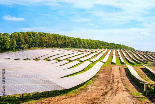Rows of solar panels on the steep hills of the field Wallpaper Mural