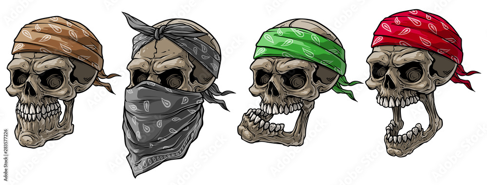 Fototapeta Cartoon detailed realistic colorful scary human biker or rapper skulls with bandana and scarf. Isolated on white background. Vector icon set.
