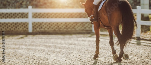 Foto op Canvas Paarden Horse Riding in Sunset