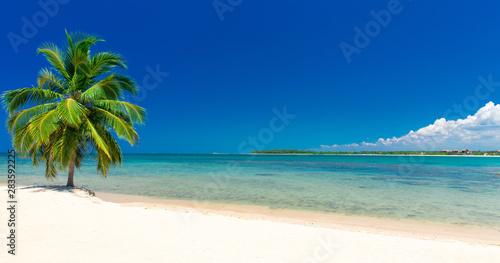 Spoed Foto op Canvas Oceanië beautiful beach and tropical sea