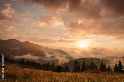 Photo Stands Salmon Foggy morning landscape