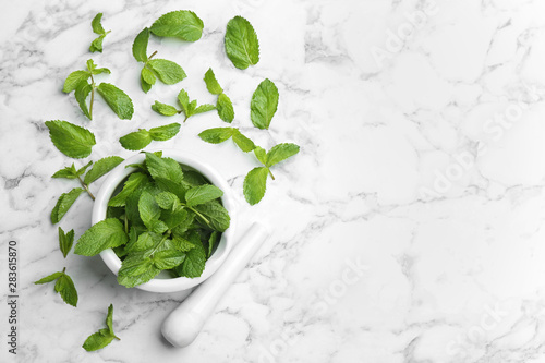 Spoed Foto op Canvas Londen Fresh mint with mortar and pestle on white marble background, flat lay. Space for text