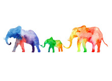 Walk The Family Of Elephants. Colors Of Rainbow.