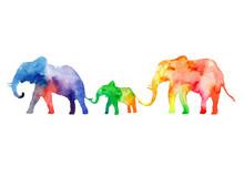 Walk The Family Of Elephants. ...