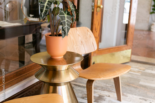 House Plant In Terra Cotta Vase On Gold Side Table Between