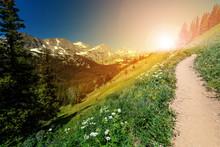 Sunlight Shines On A Dirt Hiki...