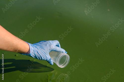 Obraz closeup of hand in glove is about ot take sample of green algae in water - fototapety do salonu