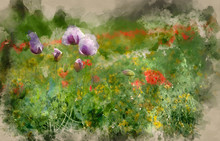 Digital Watercolour Painting O...