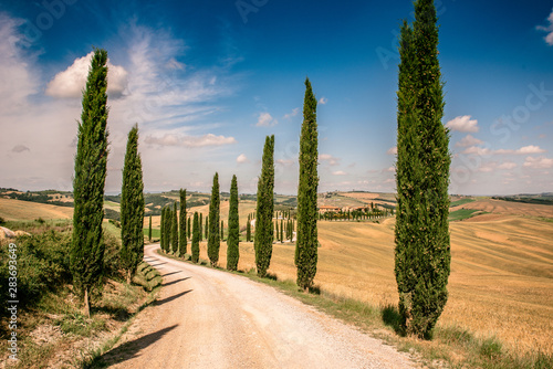 Foto Beautiful landscape scenery of Tuscany in Italy - cypress trees along white road