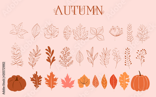 Obraz Autumn Collection of leaves, branches and pumpkins in one line style. Editable Vector illustration - fototapety do salonu