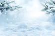 Leinwanddruck Bild - Winter landscape with snowy fir branches