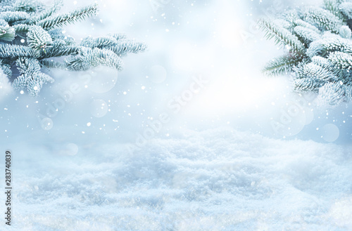 Foto auf Gartenposter Landschaft Winter landscape with snowy fir branches