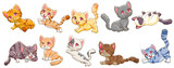 cat vector set graphic clipart design