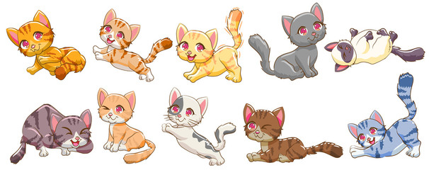 cat vector set graphic clip...