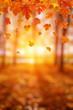 Leinwandbild Motiv Autumn leaves on the sun.