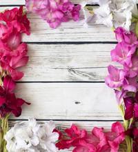 Gladiolus Flowers Top View