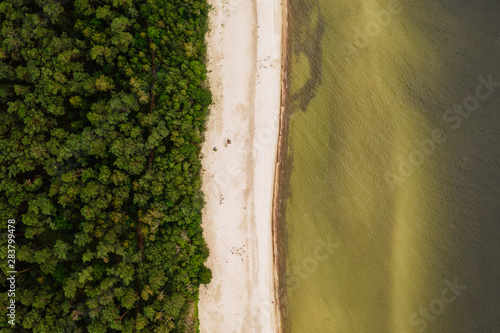 Obraz Aerial top-down view of a remote location on the Baltic sea shoreline.  - fototapety do salonu