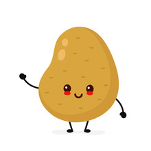Happy Cute Smiling Potato. Vector