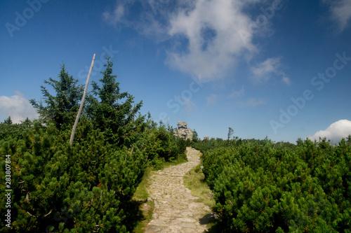 Fotografie, Obraz  trail to the Slaskie Kamienie / Divici Kameny in the Karkonosze / krkonose / Gia