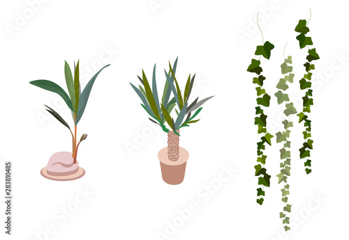 Photo  air purification green leaves trees in pots on white background illustration vector