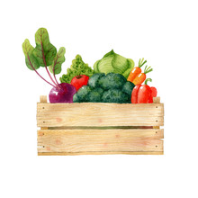 Wooden Box With Fresh Organic ...