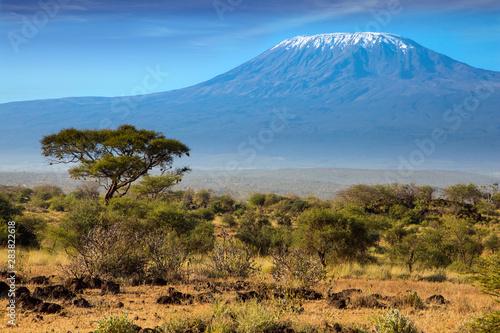 Carta da parati The Kilimanjaro
