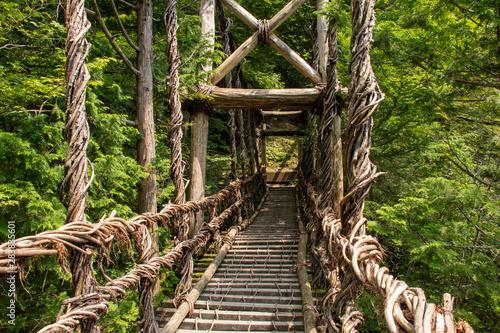 Valokuva  奥祖谷二重かずら橋
