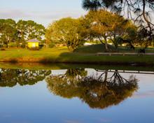 Pond, Port St. Lucie, Florida