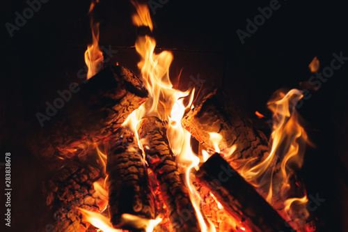 burning fire logs in the fireplace Wallpaper Mural
