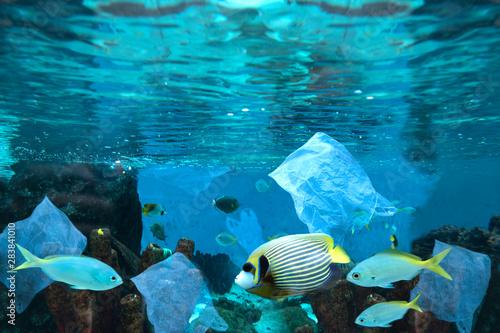 In de dag Koraalriffen Environmental pollution of plastic water bottle in the ocean