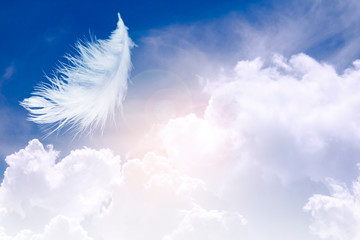 feather abstract background, white feather floating in the sky and cloud with in concept on heaven.