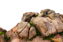 The Trees.Rocks And Stone On The Mountain .Isolated On White Background