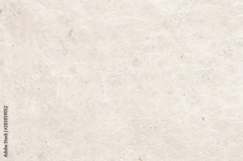 Fotografie, Obraz  和紙 白色