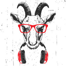 Portrait Of Goat With Glasses And Headphones. Hand-drawn Illustration. Vector