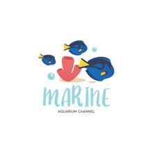 Cute Reef School Of Blue Tang ...