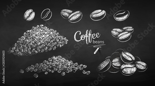 Chalk drawn sketches set of coffee beans Canvas Print