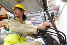 Female Staff Driving Forklift ...