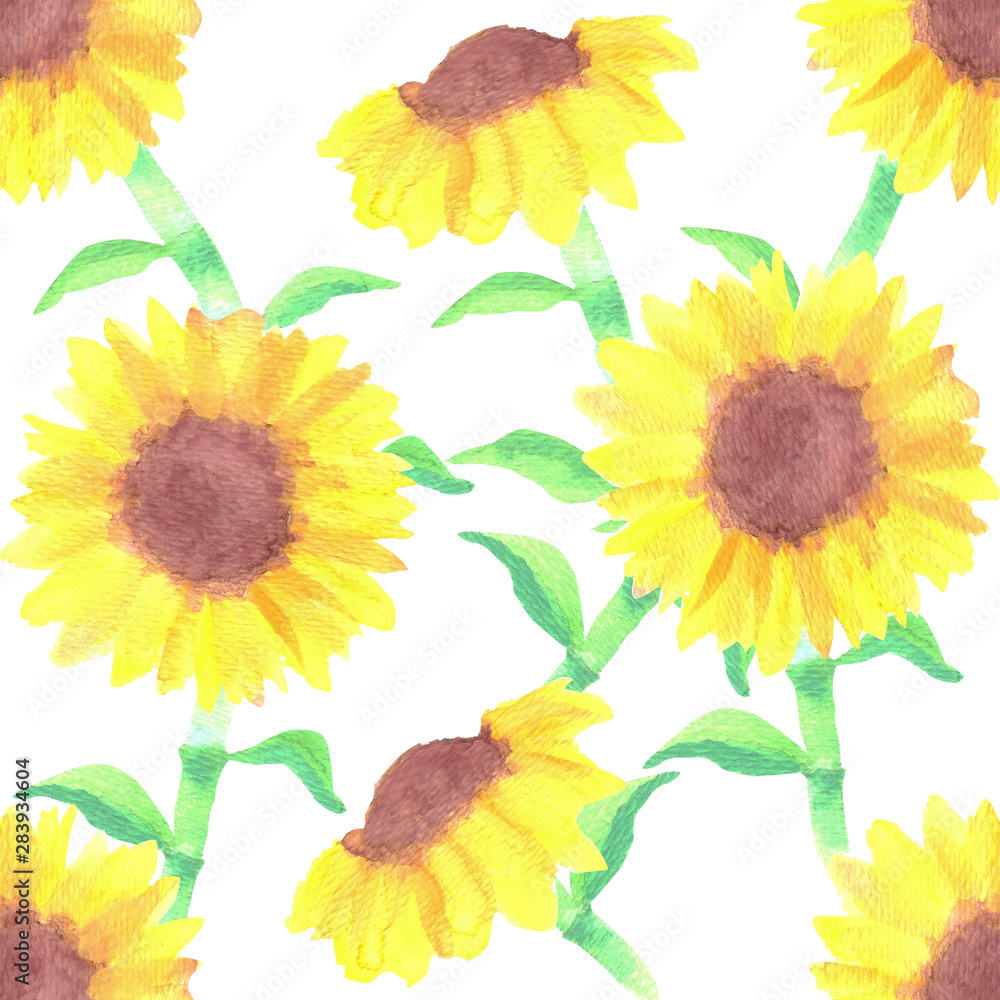 Sunflowers or Helianthus flowers a symbol of adoration and loyalty seamless watercolor background