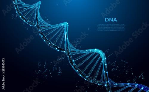 Fotografia  DNA
