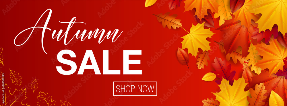 Fototapeta Autumn sale background banner with autumn fall maple leaves
