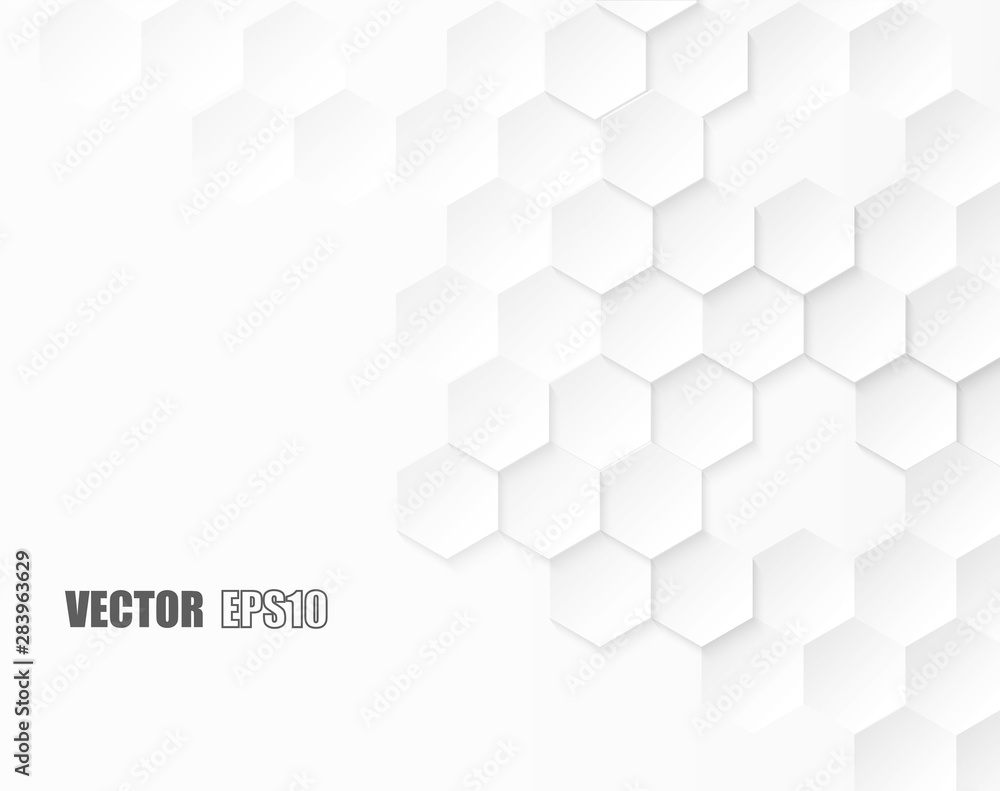 Fototapeta Abstract. Embossed Hexagon , honeycomb white background. light and shadow. Vector.