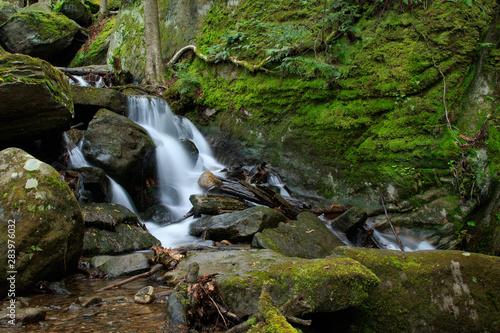 rocks and logs creating waterfall in mountain stream. large moss cover boulder