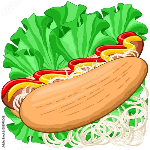 Aluminium Prints Draw hotdog, food, sandwich, delicious, snack, hungry, break, fastfood, sausage, salami, sauce, mustard, ketchup, salad, greensalad, onions, lettuce, lunch, meat, cuisine, traditional, kitchen, menu, dinne