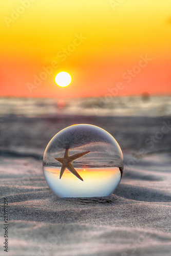 Fotobehang Donkergrijs Beautiful sunset on the beach in Slowinski National Park near Leba, Poland. View of a starfish through a glass, crystal ball (lensball) for refraction photography. Wild, untouched nature.