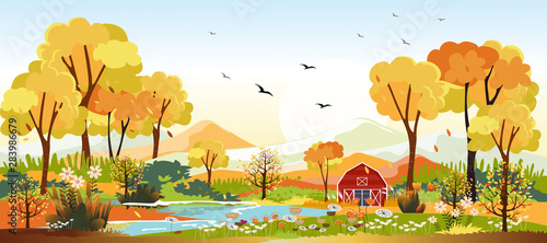 Panorama landscapes of Countryside in autumn. Panoramic of mid autumn with farm in yellow foliage. Wonderland landscape in fall season.