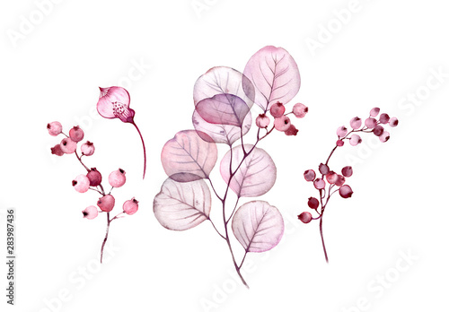 Watercolor Transparent floral set isolated on white collection of leaves, berrie Fotobehang