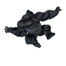 Super Gorilla Jumping Tree